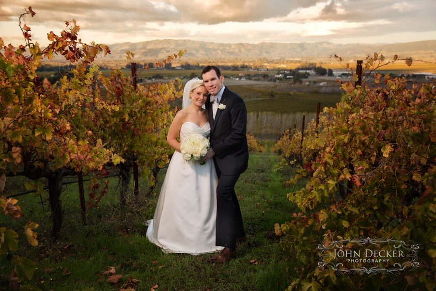 A wedding portrait of Tori and Michael among the vies on Syrah Hill on the Cline Cellars estate in Sonoma, CA.